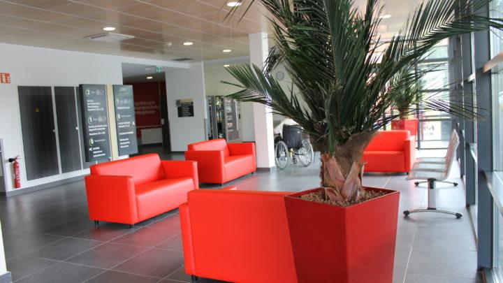 Photographie du hall d'accueil du CRF, avec ses palmiers et ses fauteuils rouges
