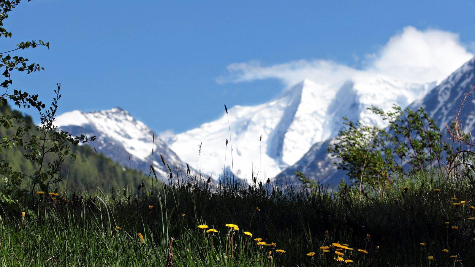 Photo d'illustration avec un champ et des montagnes